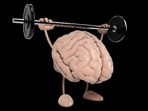 Mentaltraining koennen Sie mit einem Coach oder im Kurs erlernen