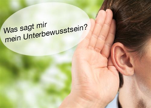 Workshop ueber selbsthypnotische Sprachmuster